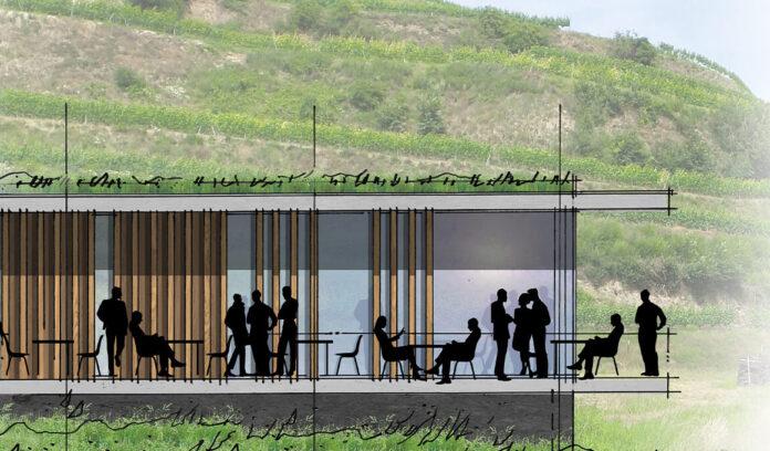 geis-brantner-johannes-klorer-architekt-freiburg-projekt-weingut-vogel-0
